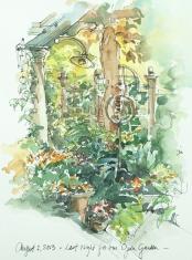 4.Last Night - Open Garden.web