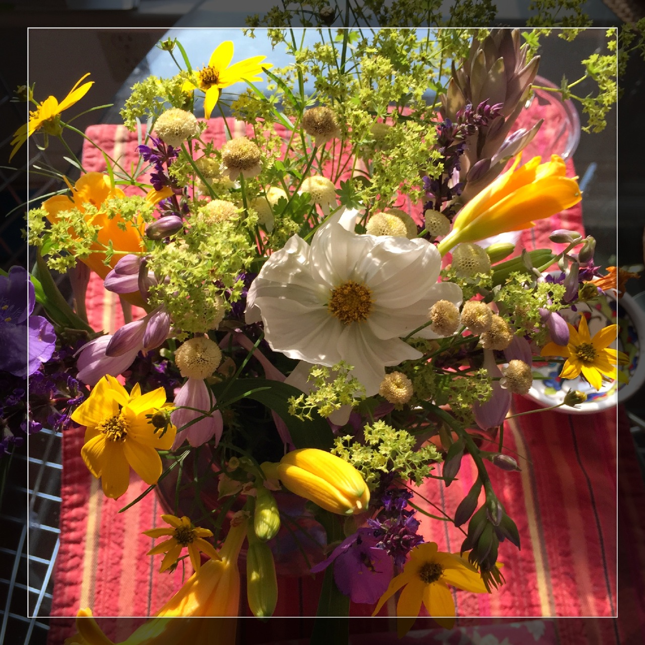 Buffalo Garden Walk | Carol Case Siracuse